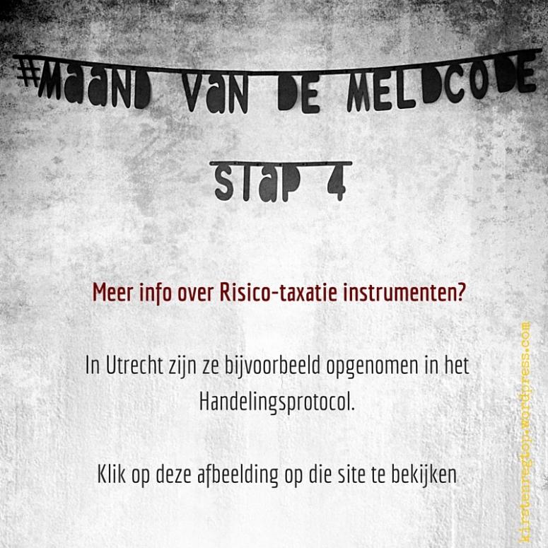Meer info over Risico-taxatie instrumenten? In Utrecht zijn ze bijvoorbeeld opgenomen in het Handelingsprotocol.